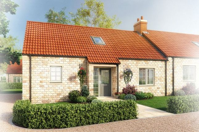 Thumbnail Semi-detached bungalow for sale in Ashwood Close, Helmsley, York