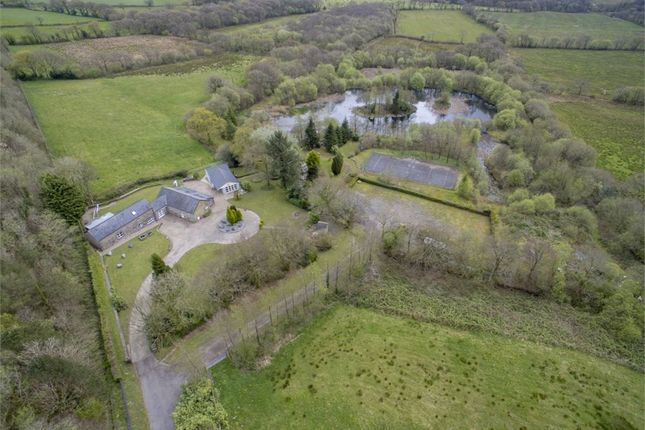 Thumbnail Farm for sale in Llanddarog Road, Carmarthen