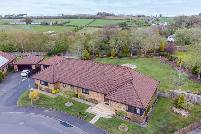 Thumbnail Detached bungalow for sale in 10 Evergreen Estate, Coalhall