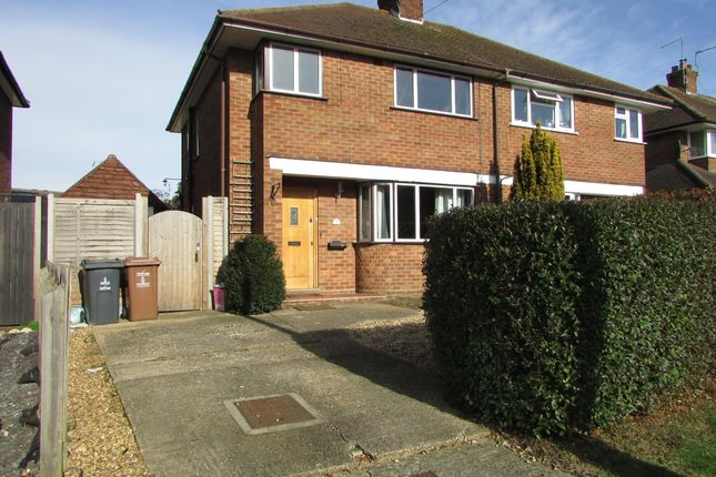 Thumbnail Semi-detached house to rent in Pound Avenue, Stevenage