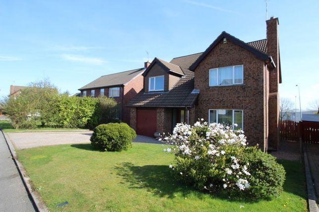 4 bedroom detached house for sale in Beechfield Drive, Bangor