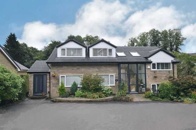 Thumbnail Detached house for sale in Maynestone Road, Chinley, High Peak