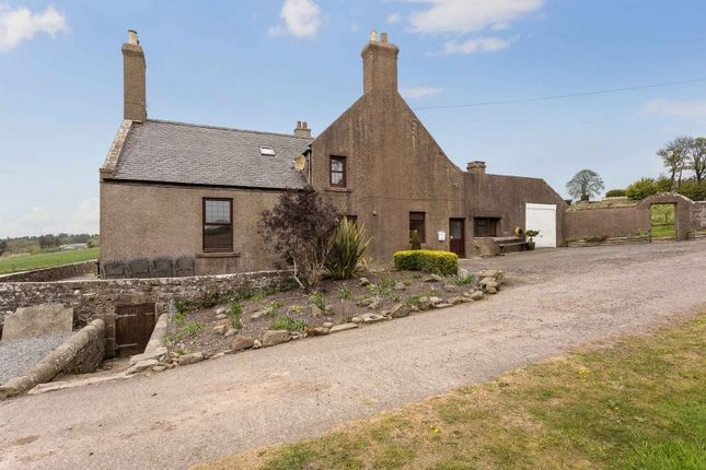 Thumbnail Detached house for sale in Montrose, Angus