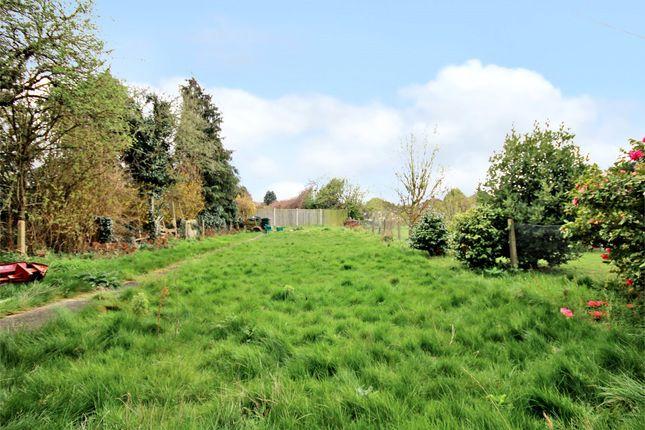 Garden of Wickham Street, Welling, Kent DA16