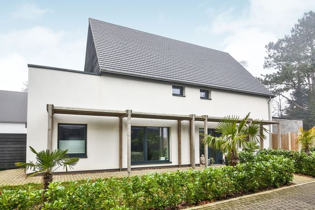 Thumbnail Detached house for sale in Carrowbreck Close, Norwich