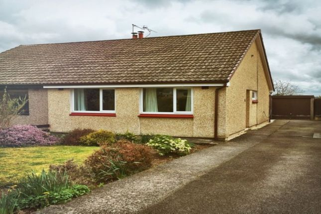 Thumbnail Bungalow to rent in Gillbrae Crescent, Dumfries