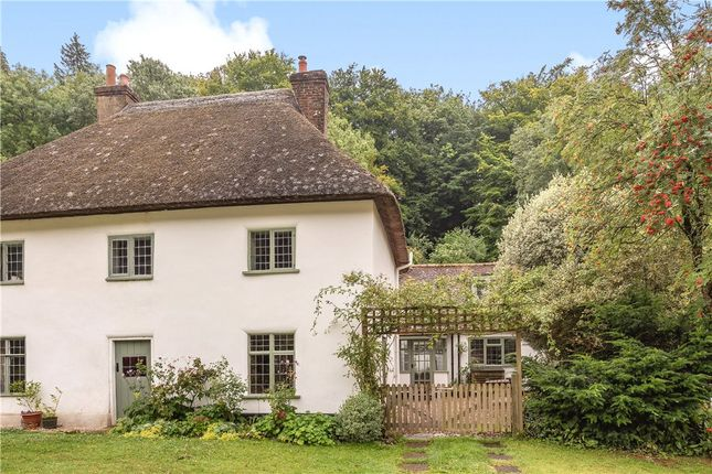 Thumbnail Semi-detached house for sale in Milton Abbas, Blandford Forum, Dorset