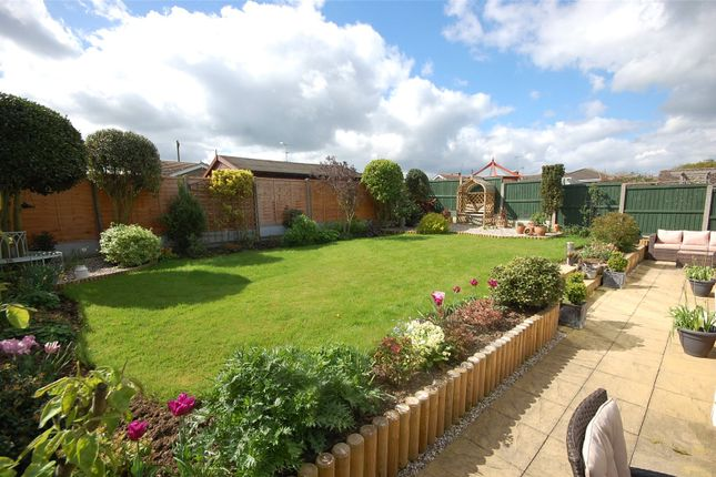 Thumbnail Bungalow for sale in Woodlands, Althorne, Essex