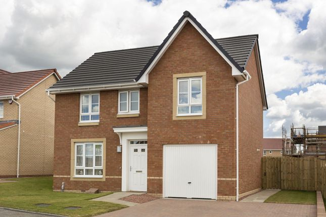 """Thumbnail Detached house for sale in """"Dornoch"""" at Manse Road, Stonehouse, Larkhall"""