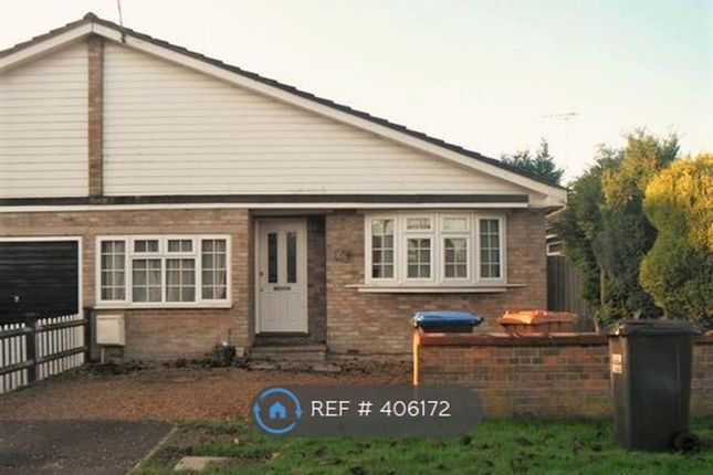 Thumbnail Bungalow to rent in Knolles Crescent, North Mymms, Hatfield