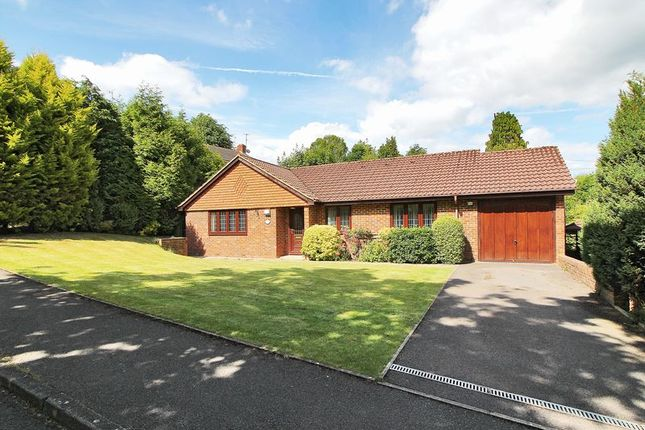 Thumbnail Detached bungalow for sale in The Rise, East Grinstead, West Sussex