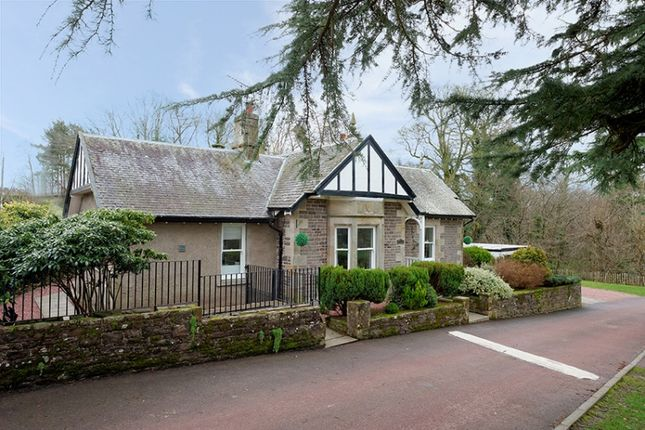 Thumbnail Bungalow for sale in Castlebank Park, St Patricks Road, Lanark