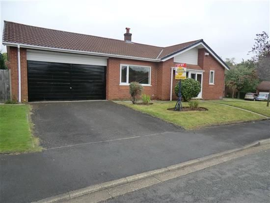 Thumbnail Bungalow to rent in The Farthings, Chorley