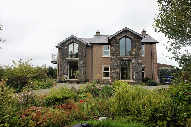 Thumbnail Detached house for sale in Castleroe Road, Coleraine