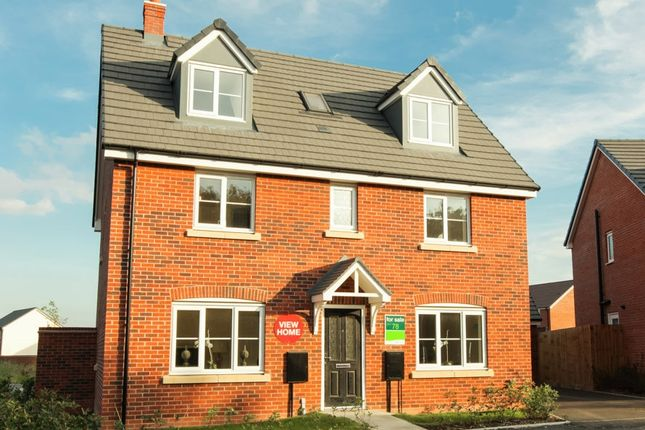 "Thumbnail Detached house for sale in ""The Newton "" at Ribston Close, Banbury"