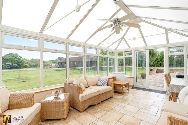 Conservatory of Epping Road, Roydon, Essex CM19