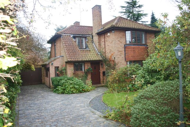 Thumbnail Detached house to rent in Wambrook Close, Hutton Mount