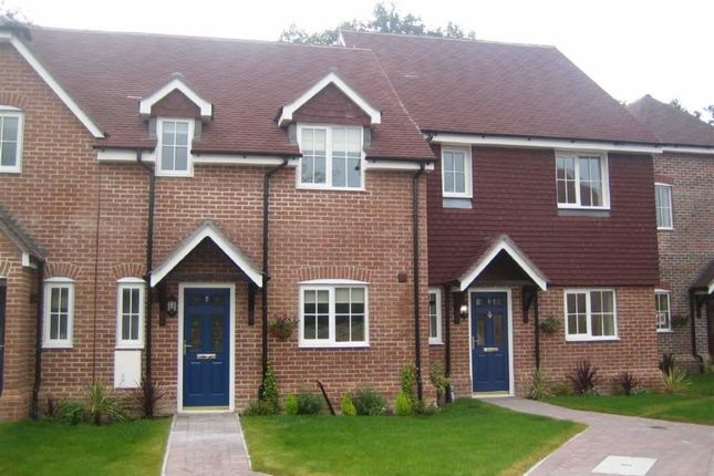 Thumbnail Semi-detached house to rent in Wheelwrights Close, Highclere, Newbury