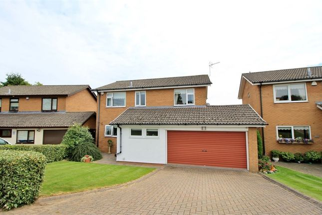 Thumbnail Detached house for sale in Pentre-Poeth Close, Bassaleg, Newport