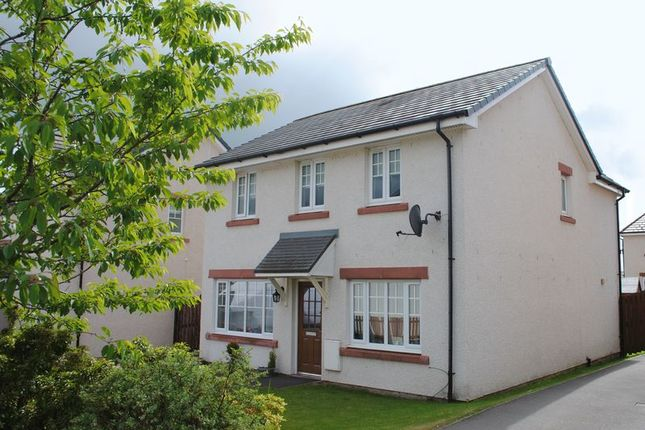 Thumbnail Detached house to rent in Rowan View, Lanark