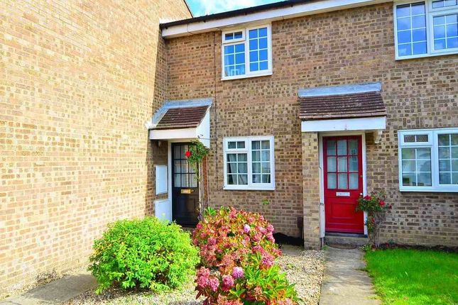 Thumbnail Terraced house to rent in Nutley Close, Ashford