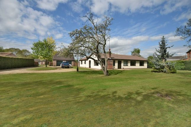 Thumbnail Detached bungalow for sale in Wigsley Road, Thorney, Newark