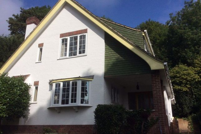 Thumbnail Property to rent in The Spinney, Canterbury