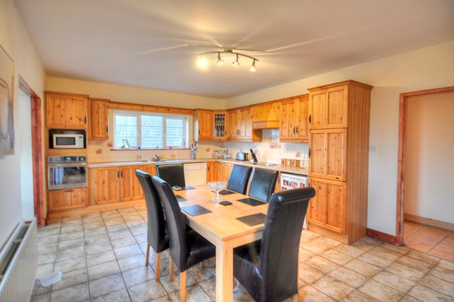 Thumbnail Bungalow for sale in Winetavern, Baltinglass, Wicklow
