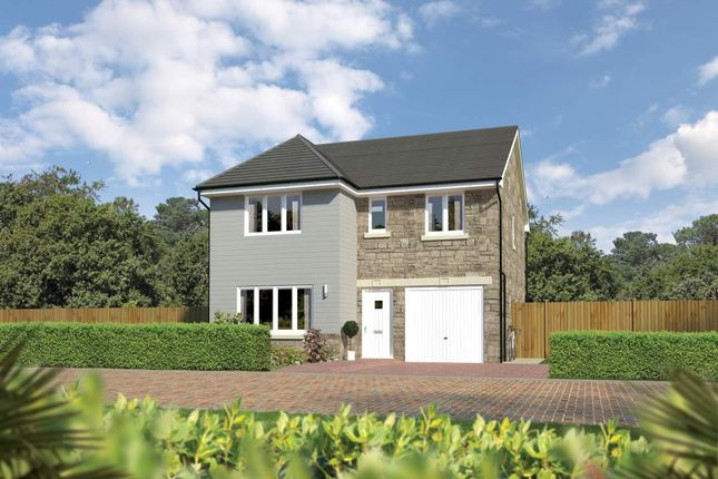 "Thumbnail Detached house for sale in ""Dukeswood"" at Beech Path, East Calder, Livingston"