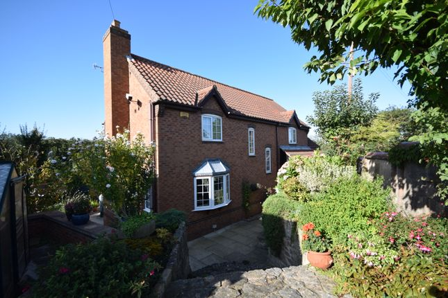 Thumbnail Detached house for sale in Holme Hall Lane, Stainton, Rotherham