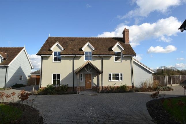 Thumbnail Detached house for sale in The Paddocks, Southend Road, Rettendon Common, Chelmsford