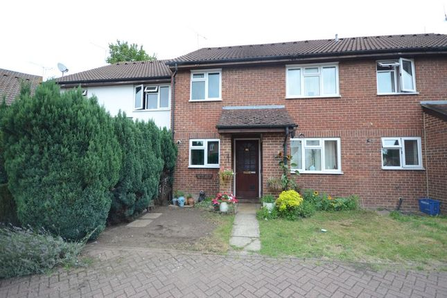 Thumbnail Terraced house to rent in Chamomile Gardens, Farnborough