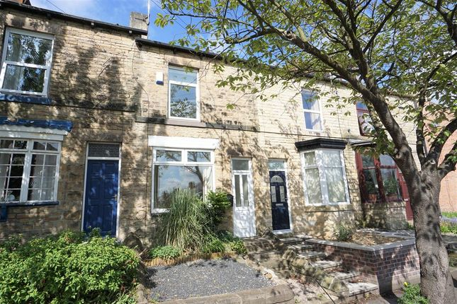 Thumbnail Terraced house for sale in Nairn Street, Crookes, Sheffield