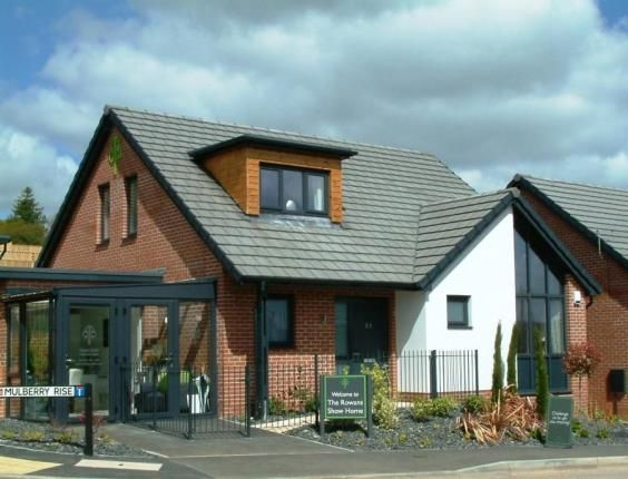 Thumbnail Bungalow for sale in Rowan Drive, Seaton