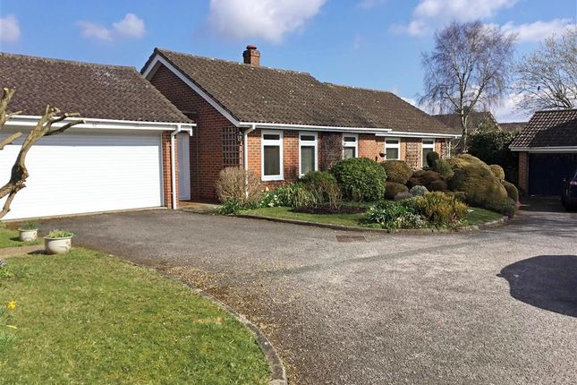 Thumbnail Detached bungalow for sale in Moggs Mead, Petersfield, Hampshire