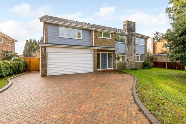 Thumbnail Detached house for sale in Longlands Spinney, Worthing, West Sussex