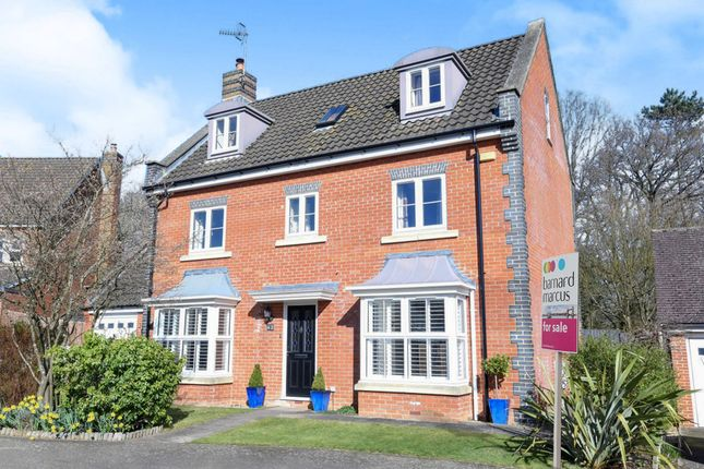 Thumbnail Detached house for sale in Reed Drive, Redhill