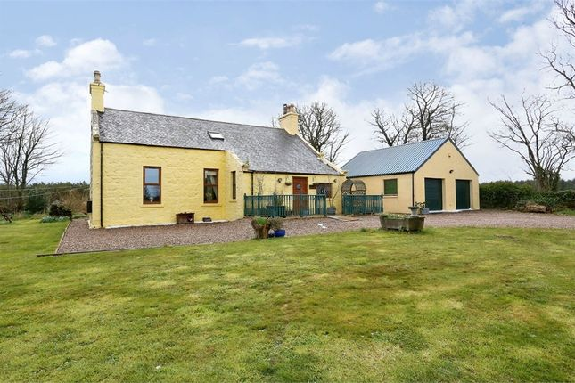 Thumbnail Detached house for sale in Fraserburgh, Strichen, Fraserburgh, Aberdeenshire