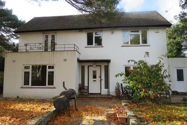Thumbnail Property To Rent In Cavendish Road Bournemouth