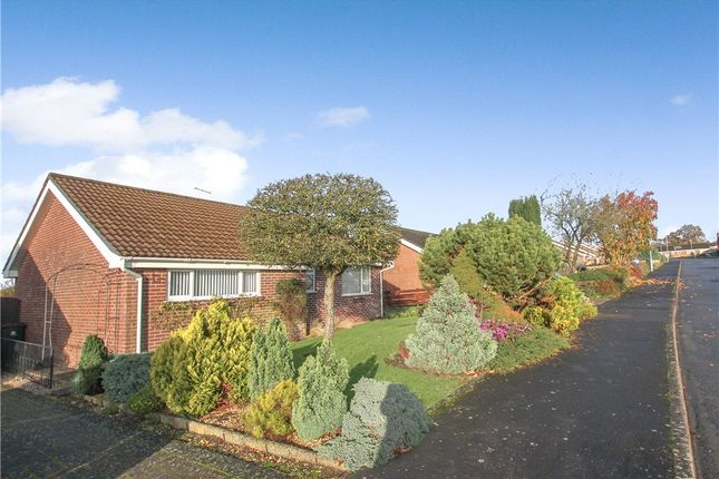 Thumbnail Detached bungalow for sale in Homefield, Child Okeford, Blandford Forum, Dorset