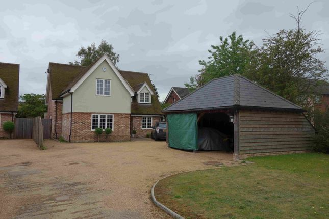 Thumbnail Detached house to rent in Bucklesham Road, Ipswich, Suffolk