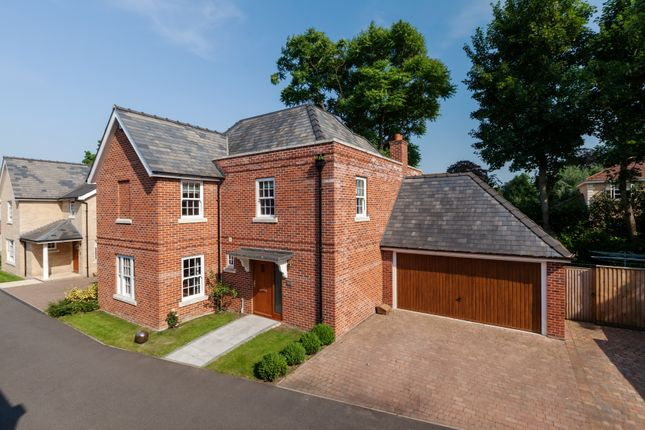 Thumbnail Detached house for sale in Arborfield Drive, Newmarket