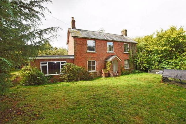 Photo 13 of With 4.58 Acres - Dunsells Lane, Ropley, Hampshire SO24