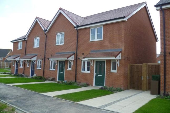 Thumbnail Semi-detached house to rent in Swift Crescent, Deal