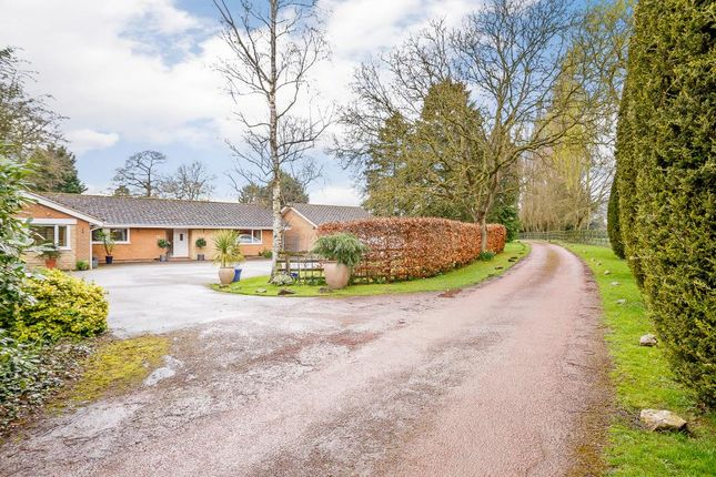 Thumbnail Bungalow for sale in The Drive, Horton, Northampton