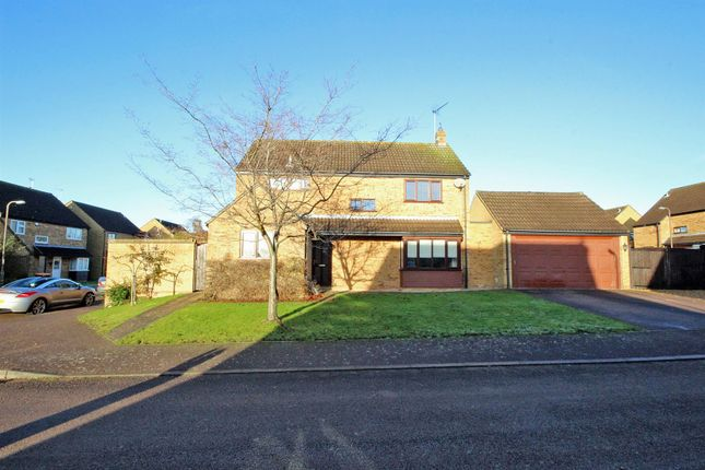 Thumbnail Detached house for sale in Brittons Close, Sharnbrook, Bedford