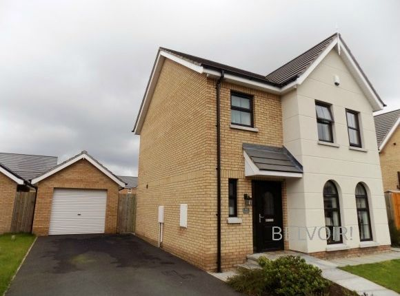 Thumbnail Detached house to rent in Mornington Gardens, Lisburn