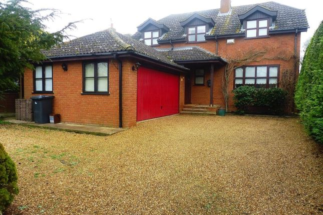 Thumbnail Detached house to rent in Jacques Lane, Clophill, Bedford