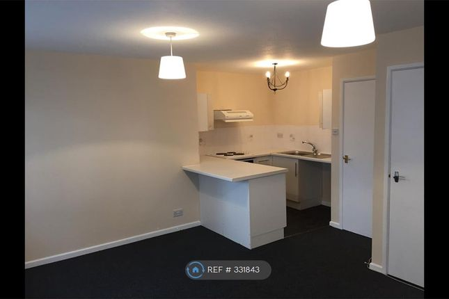 Thumbnail Studio to rent in Thorold Road, Southampton