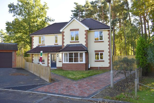 Thumbnail Detached house for sale in Sycamore Place, Stapehill, Wimborne